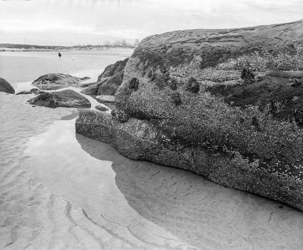 beachboulders003.jpg